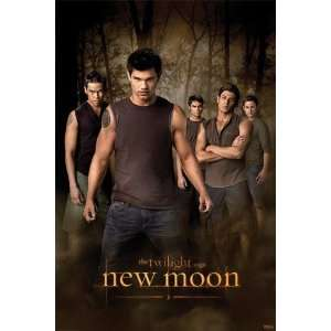 Twilight 2   New Moon   Wolf Pack PREMIUM GRADE Rolled