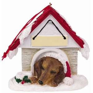 Dachshund Red in Dog House