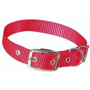 Hamilton 3/4 Single Thick Nylon Deluxe Dog Collar, 22