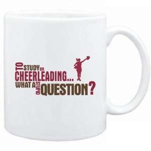 New  To Study Or Cheerleading  What A Stupid Question