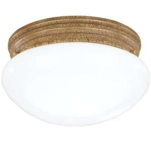 Sea Gull   Ceiling Light   5328 801