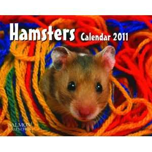 2011 Animal Calendars Hamsters   12 Month   24.8x19.7cm