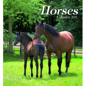 2011 Animal Calendars Horses   12 Month   22.9x24.8cm
