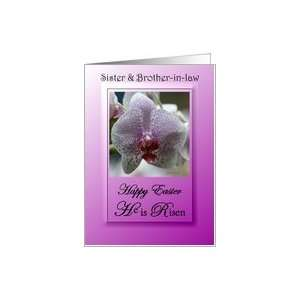He Is Risen ~ Religious / Sister & Brother in law ~ Purple Orchid Card